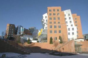 麻省理工学院3
